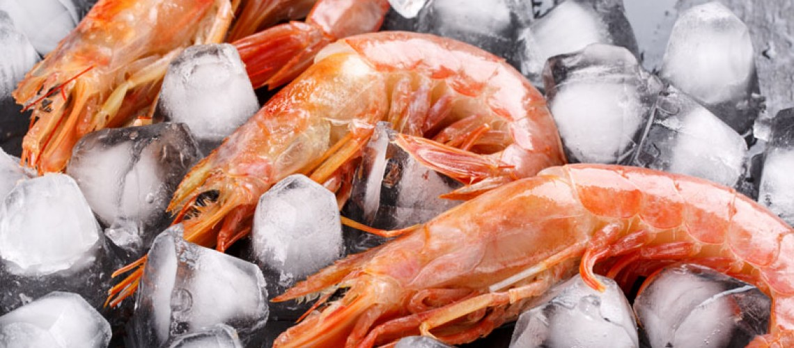 Argentinian Red Shrimp: Everything You Need to Know